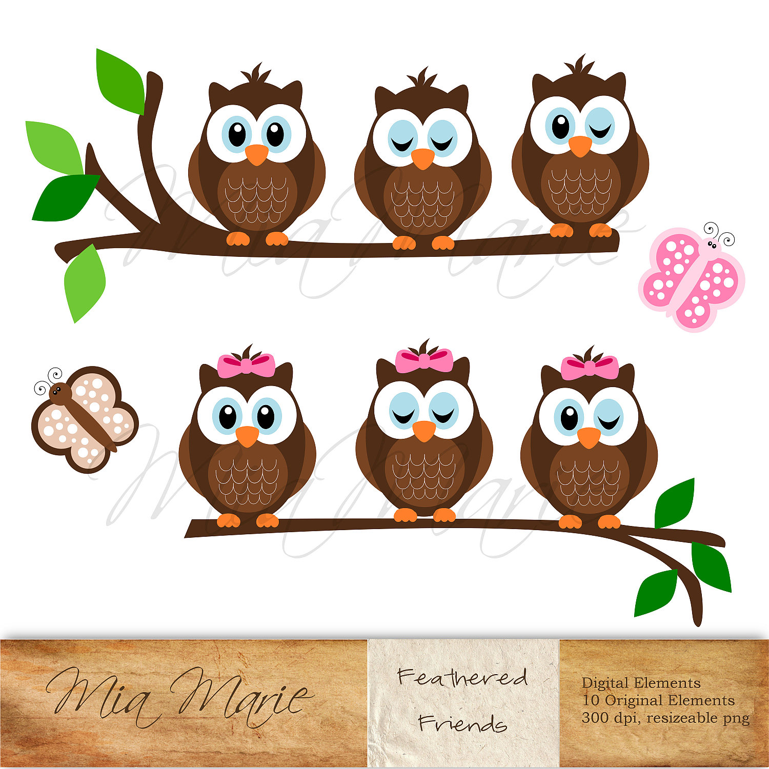 Instant download digital clip art owl clipart owl by mymiamarie