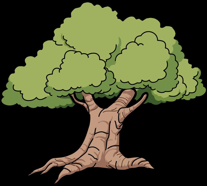 Big tree clip art bing images