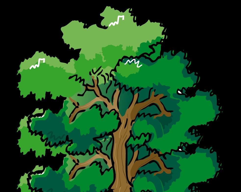 Pine tree clip art free
