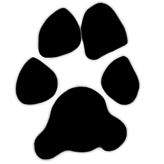 Bobcat paw print clip art clipart