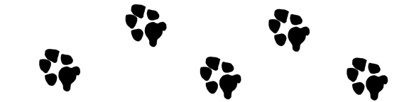 Paw print usssp clipart image #1107