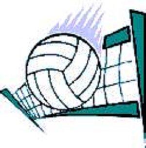 Volleyball clip art clipart