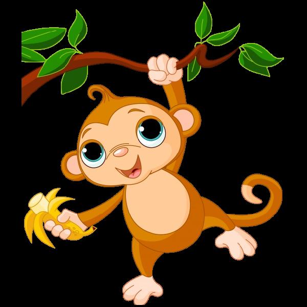 Funny monkey images 2