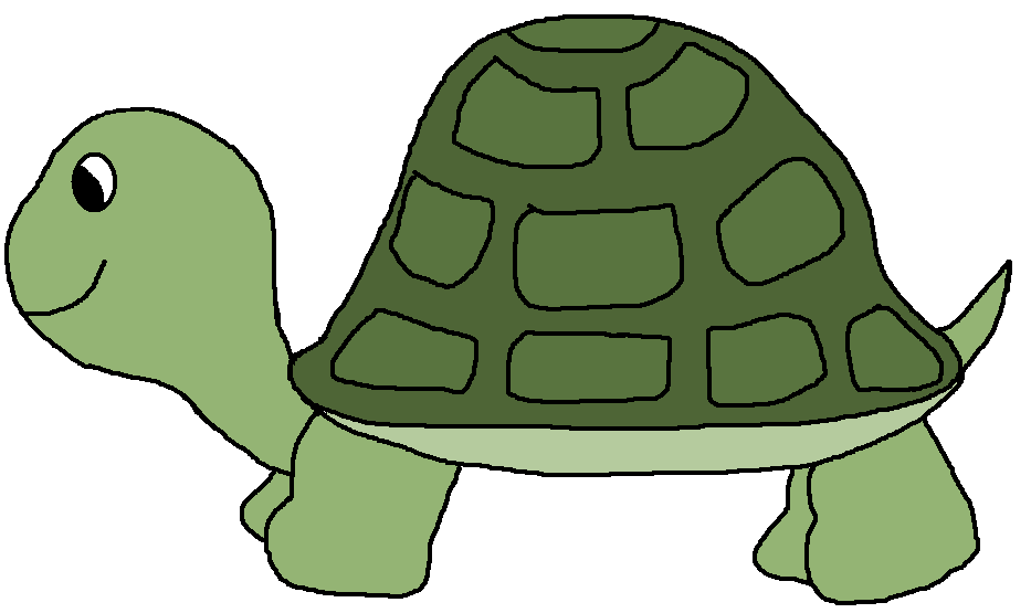 Clipart of turtle clipart