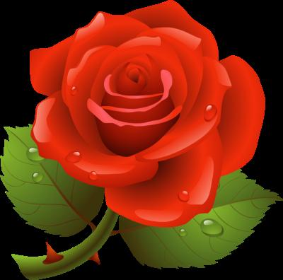 Rose clip art images clipart
