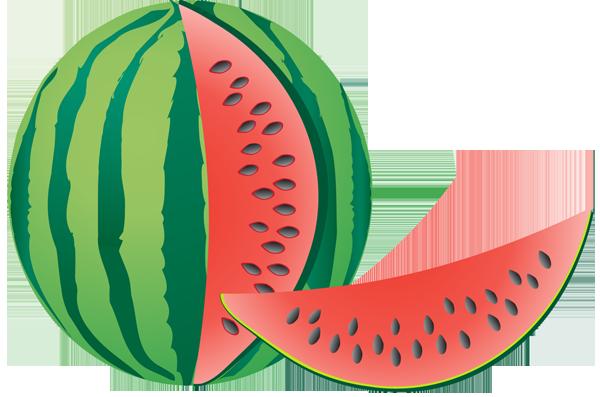 Watermelon clip art clipart