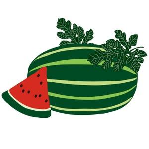 Watermelon clipart free clip art images