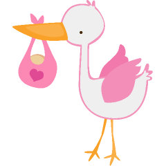 Gallery for clipart stork with baby girl image #4271