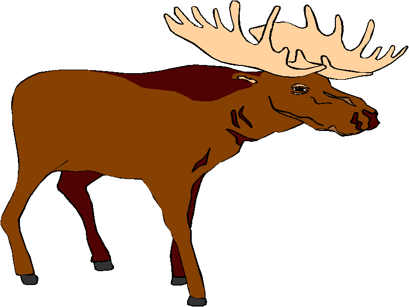 Moose free luau clip art