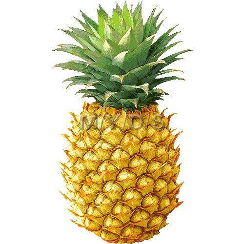 Pineapple clipart free clip art hair