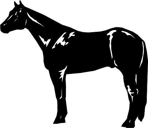 Quarter horse clip art clipart