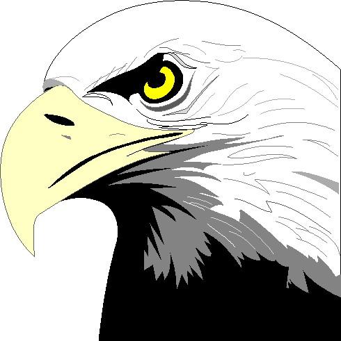 Clip art clip art eagle