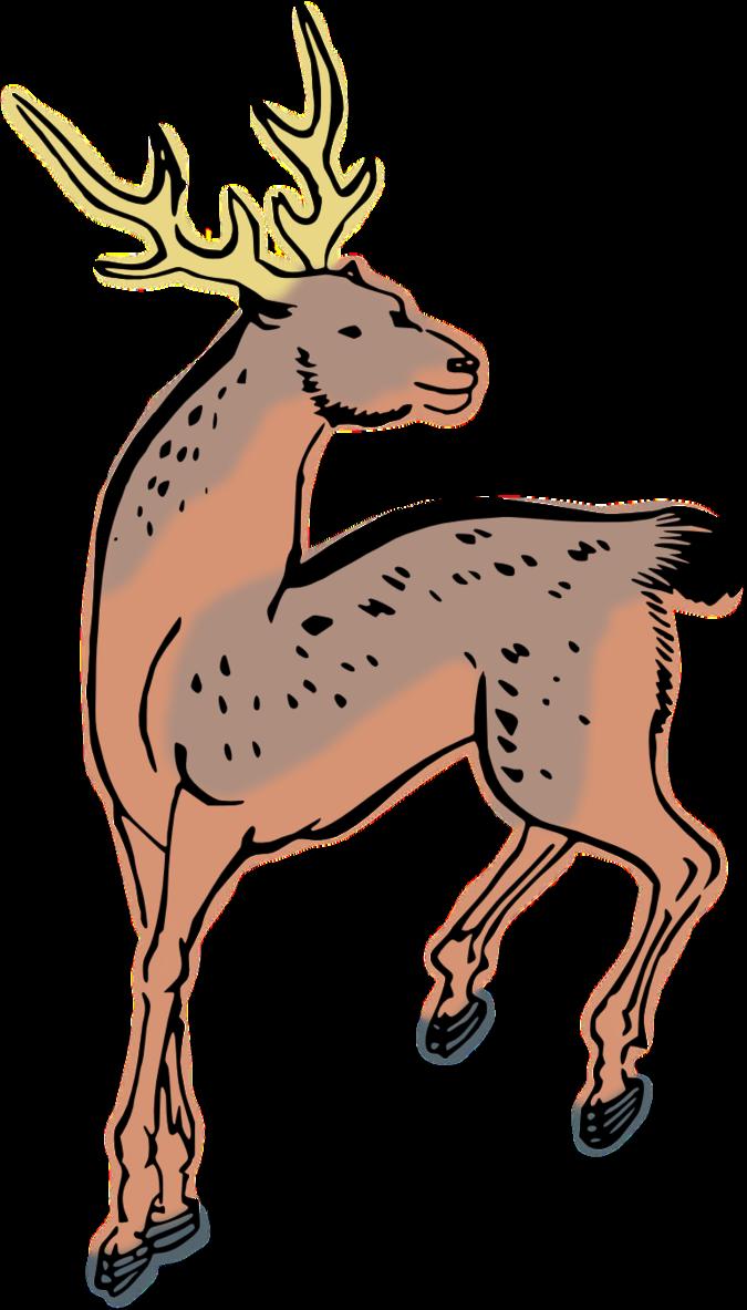 Deer clip art clipart