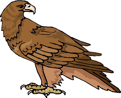 Eagle clip art 4