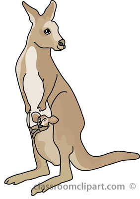 Kangaroo clipart kangaroo with baby 4a classroom clipart