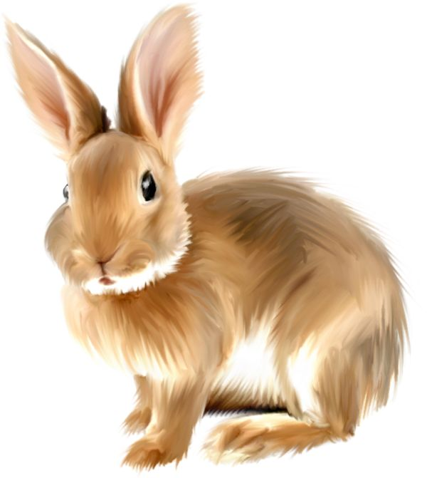 Painted bunny clipart clipart bunnies