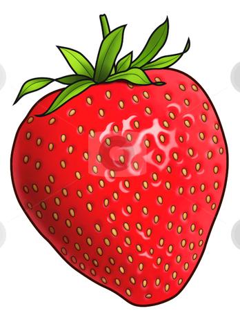 Strawberry stock vector