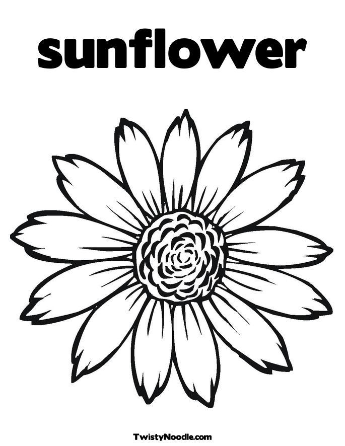 Sunflower clip art vector clip art online royalty free public