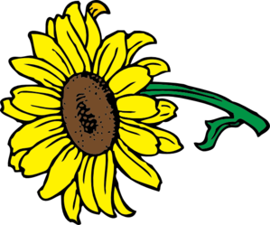 Sunflower clip art vector clip art online royalty free