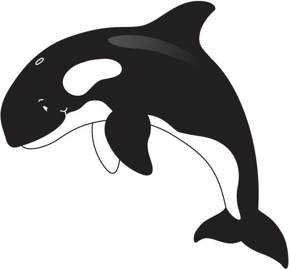 Whale clip art 2