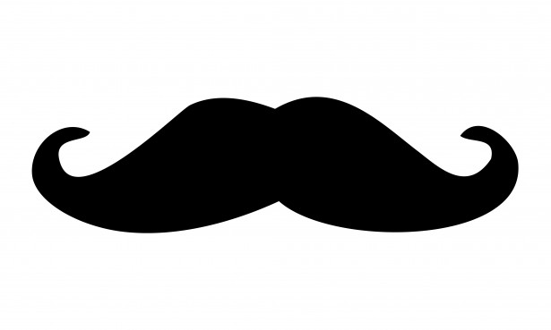 Mustache black moustache clipart free stock photo public domain pictures