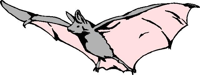 Clip art clip art bats