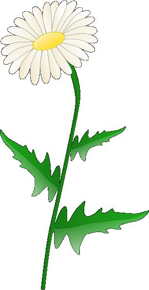 Daisy clip art at vector clip art online royalty free
