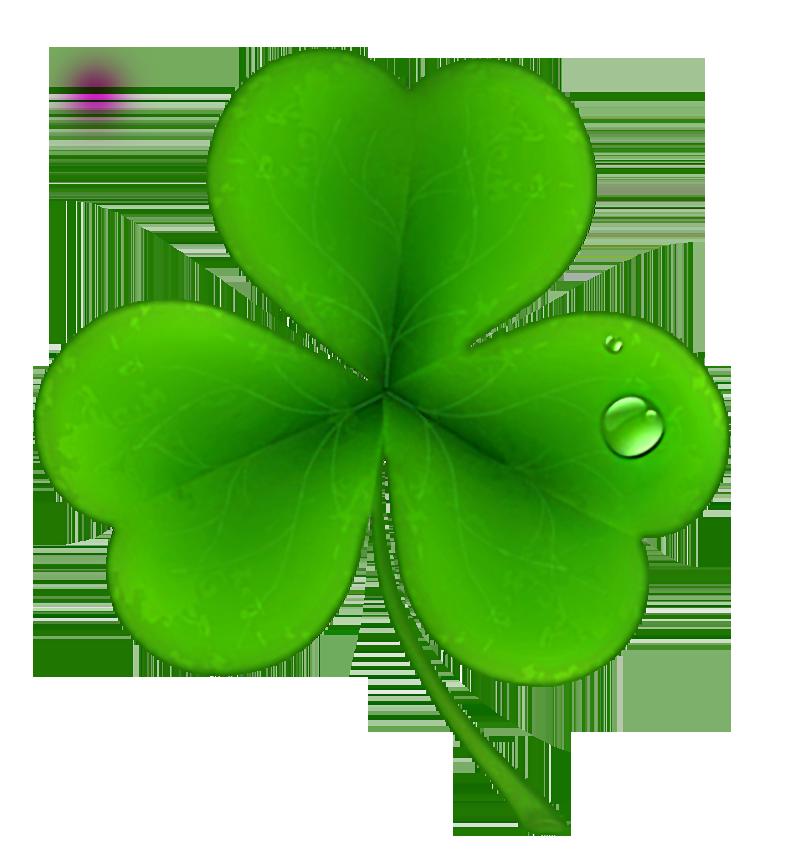 St patricks day shamrock clover clipart 0