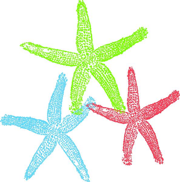 Starfish clip art  2