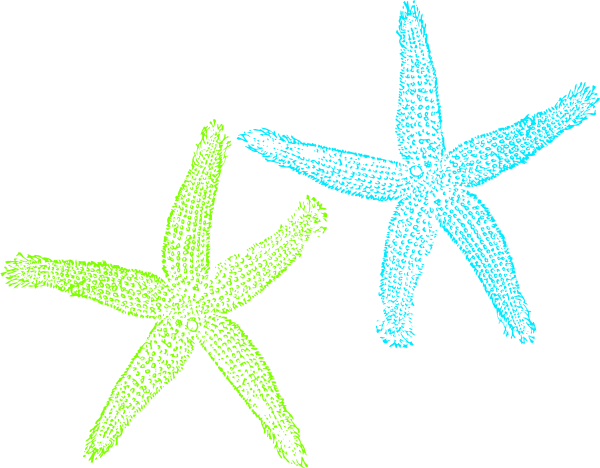 Turquoise and lime green starfish clip art at vector
