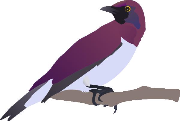 Free bird clip art clipart