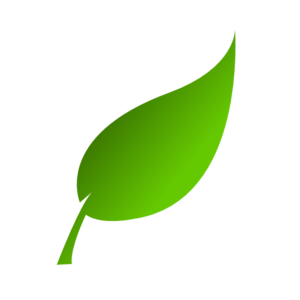 Green leaf clip art at vector clip art online royalty 3