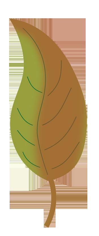 Leaf fall leaves clip art beautiful autumn clipart
