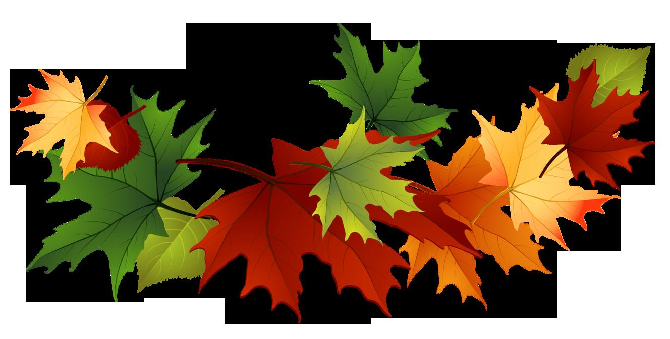 Leaf fall leaves clip art