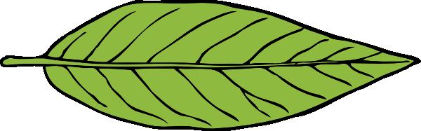 Leaf leaves clip art  2
