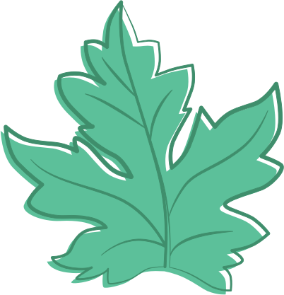 Leaf leaves clip art  3