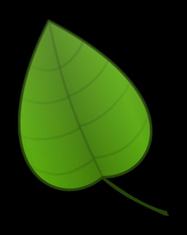 Leaf leaves clip art