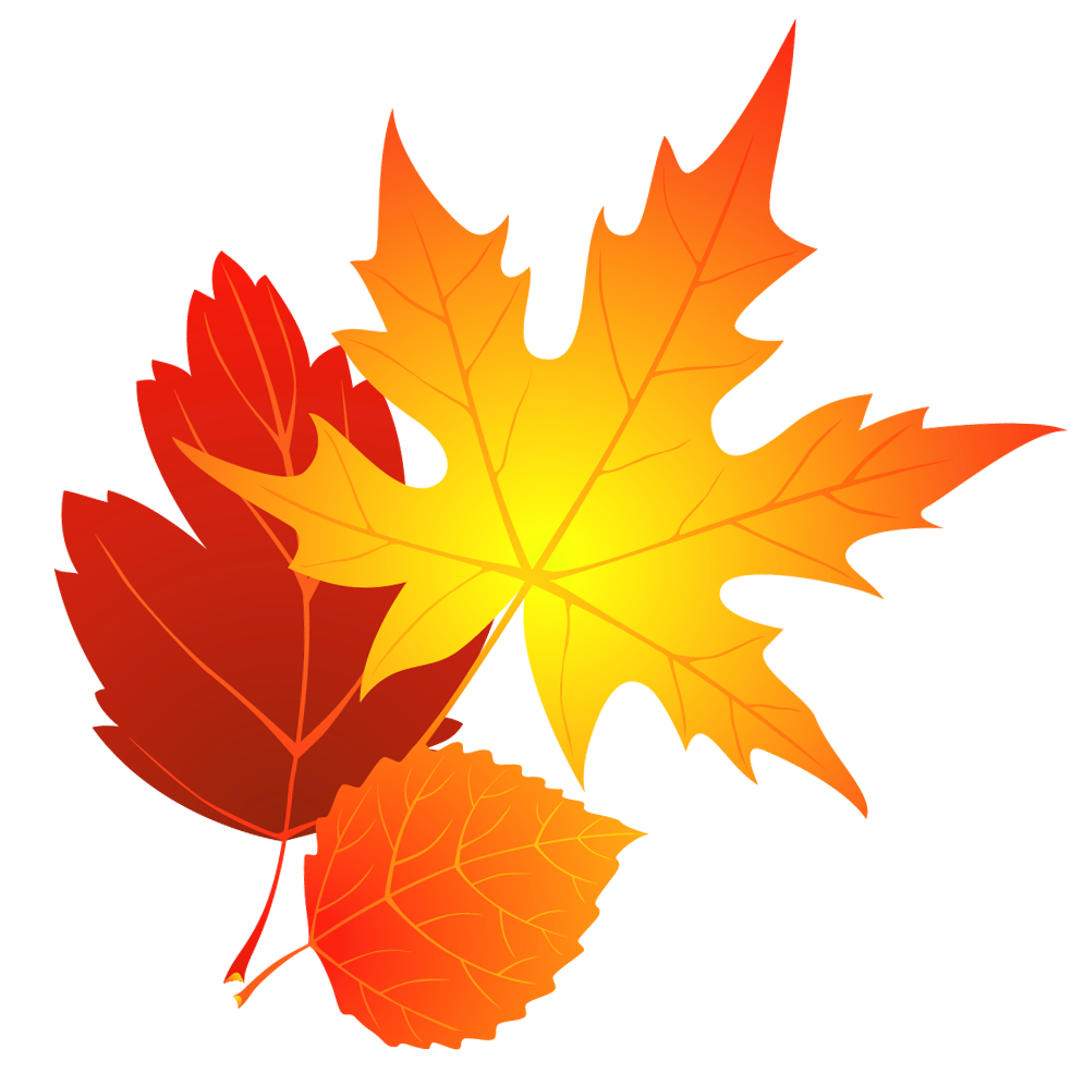 Leaf transparent fall leaves clipart 0