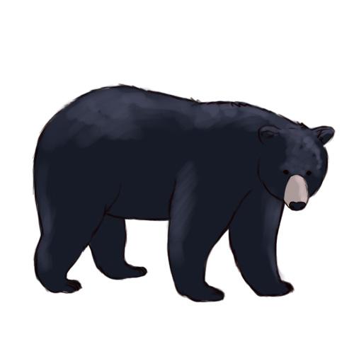 Free clip art black bear clipart