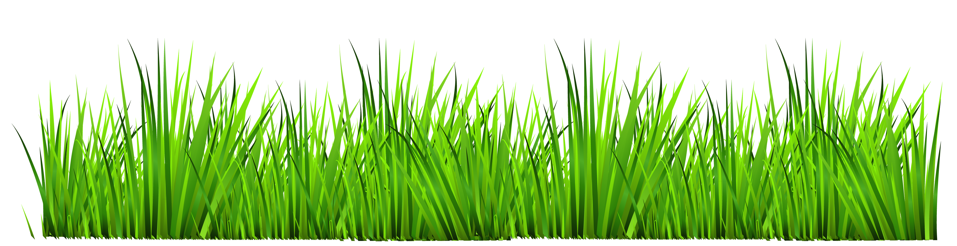 Grass decor clipart 0