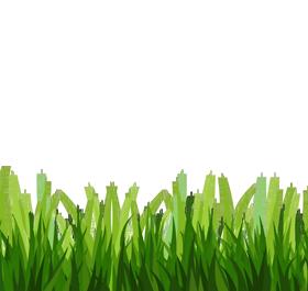 Grass images download free grass transparent backgound clipart