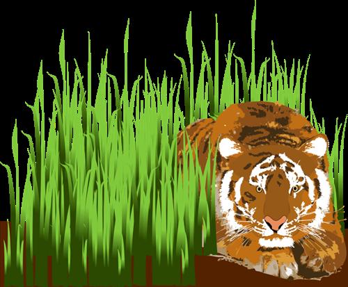 Grass tiger clip art