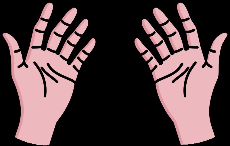 Hand clip art  2
