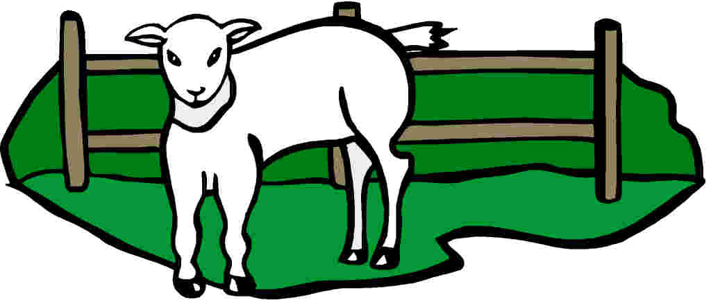 Sheep clip art 3