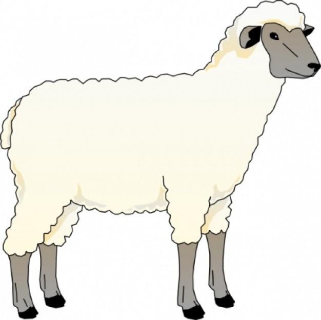Sheep clipart 3