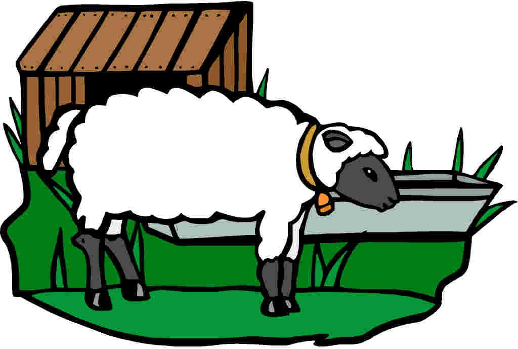 Sheep clipart 5