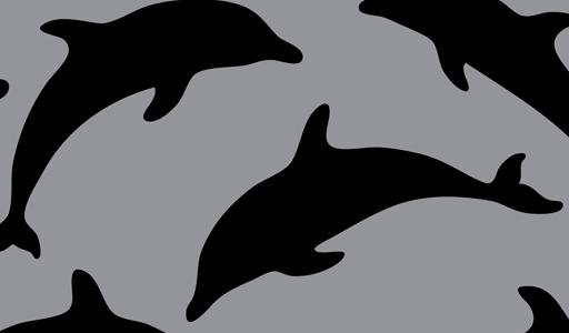 Tropical dolphin clipart vector genius 2