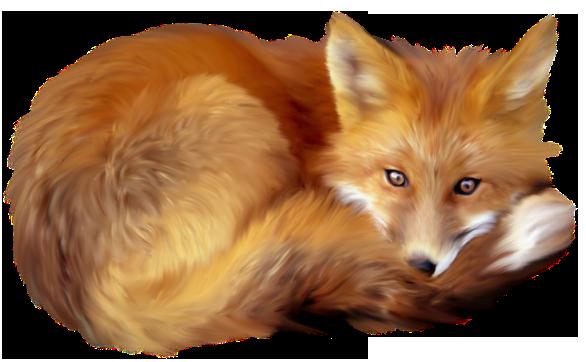 Fox clipart 0