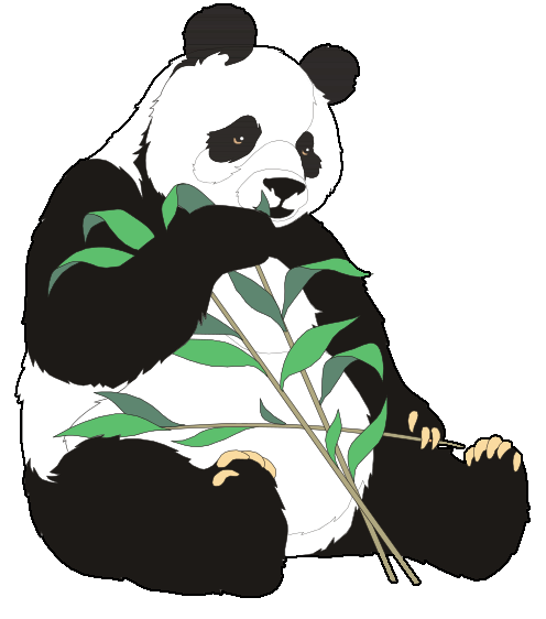 Giant panda clip art  2