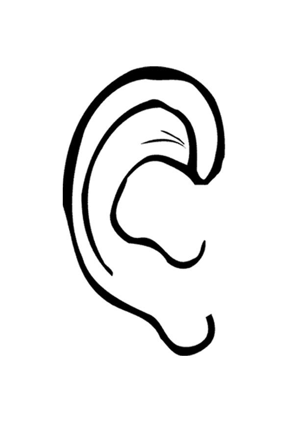 Ear clipart free clipart